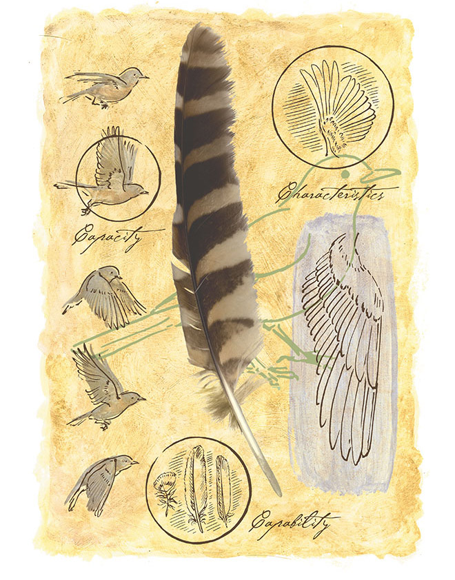 Mixed-Media_Feather_660